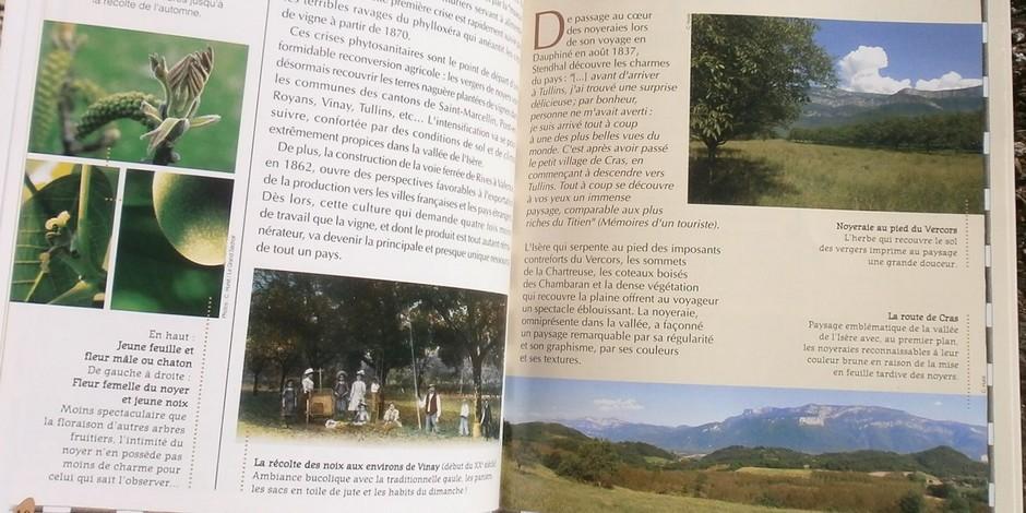 La Noix de Grenoble Une vallée et des hommes